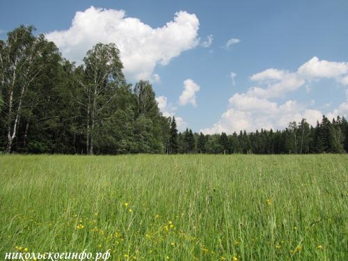 аренда земли сельхозназначения в ленинградской области необычайные существа