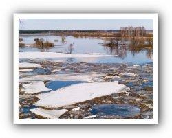 Более тысячи участков и дворов подтоплены из-за паводка в Ленобласти