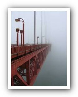 МЧС: как не пропасть в тумане