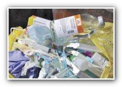 Красный Бор может стать свалкой биологических отходов из больниц Санкт-Петербурга